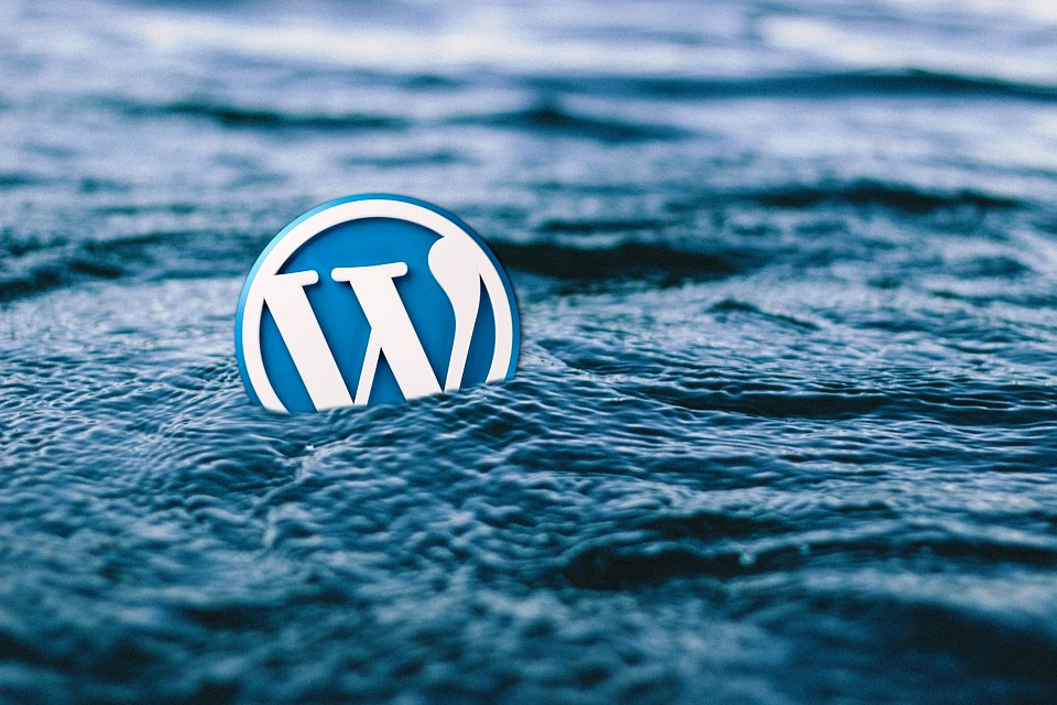 The Truth About WordPress